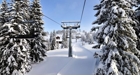 ski lift surrounded by trees with snow